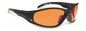 Bilde av Bertoni AF 152 D brille